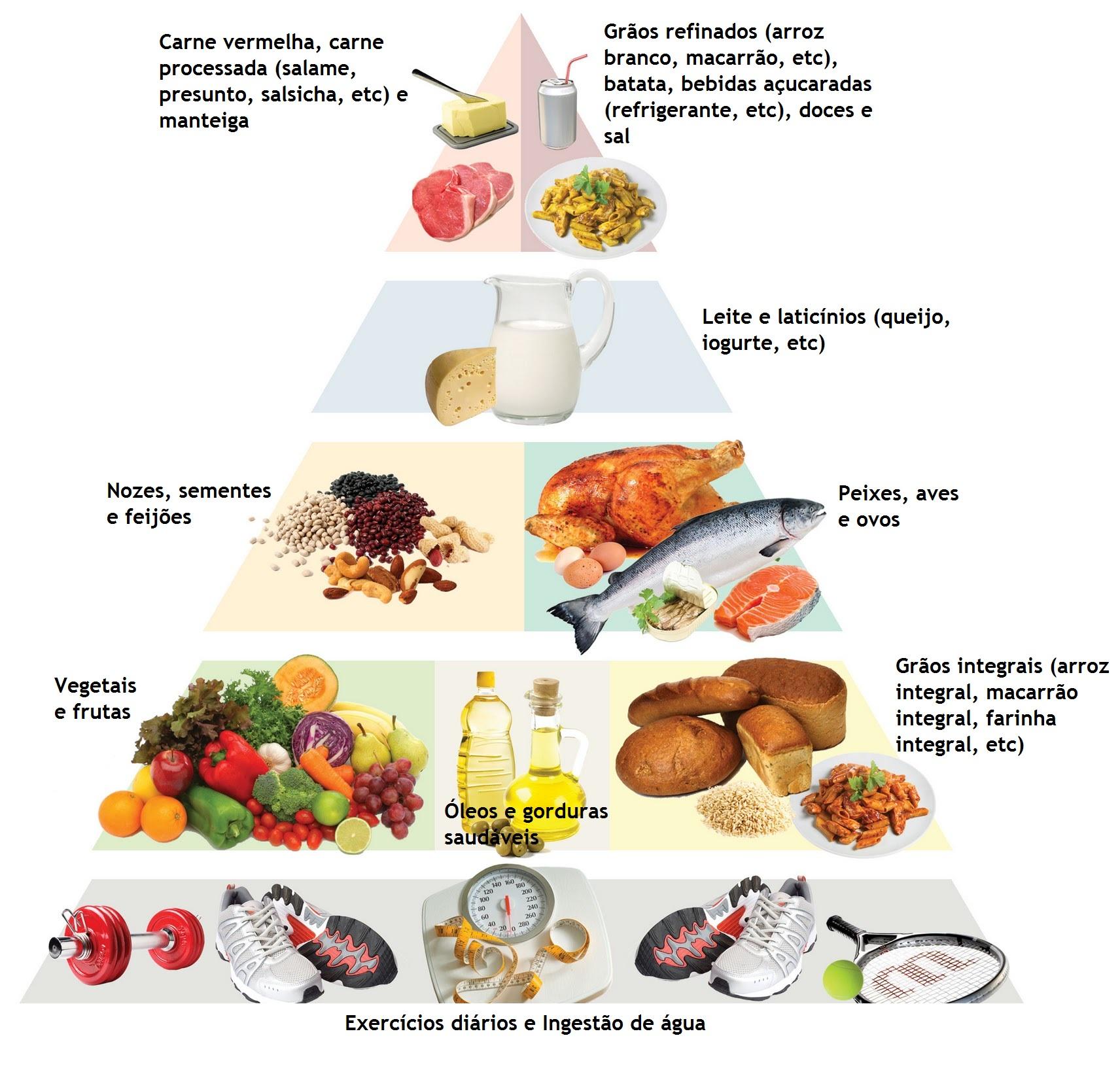 tipos de lipidios esteroides